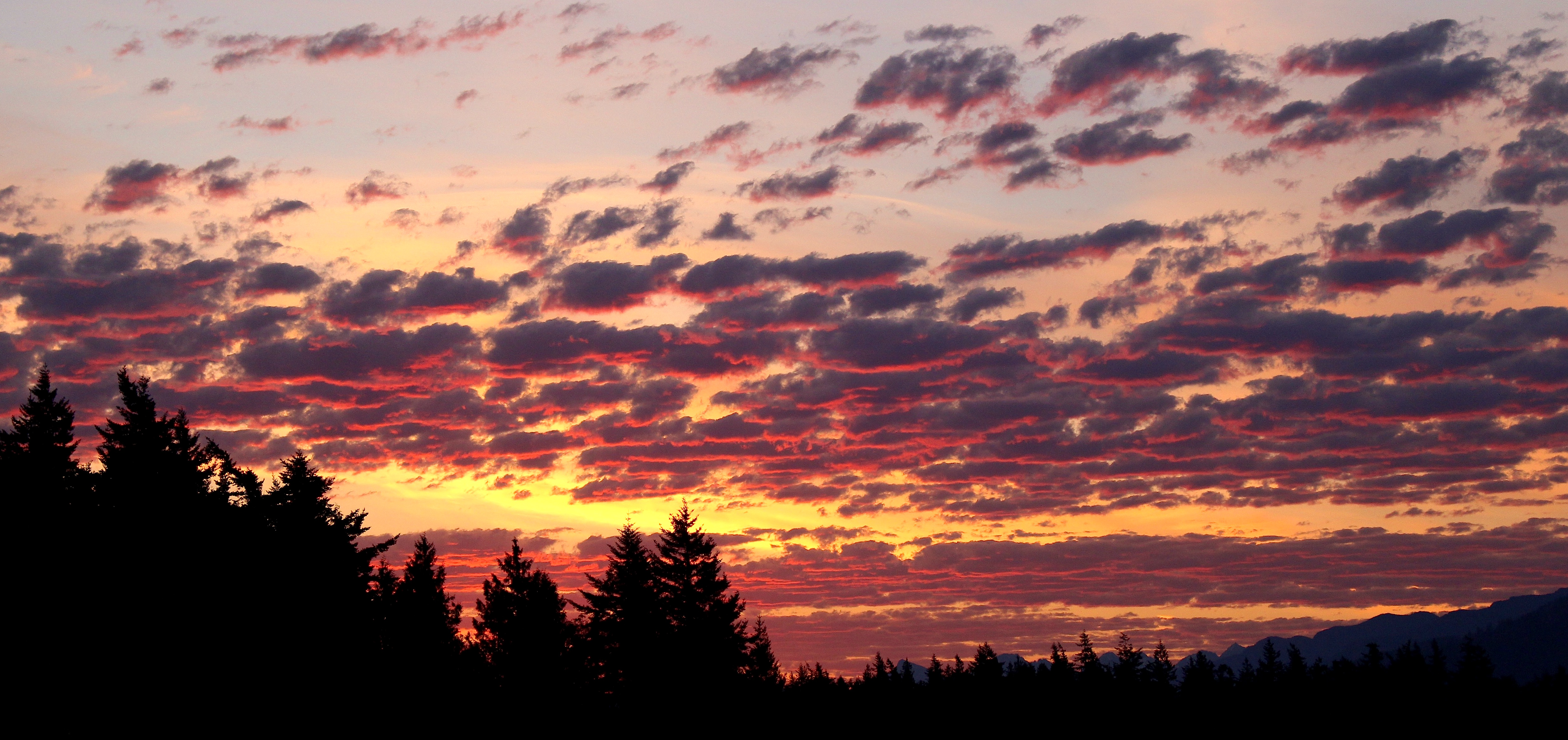 sunrise615154