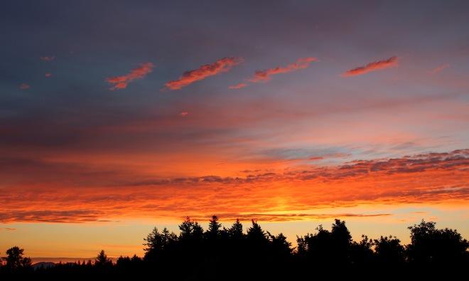 sunrise625151