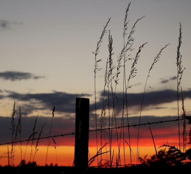 sunset626152