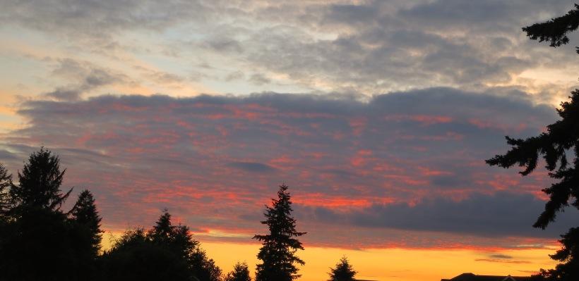 sunset6315