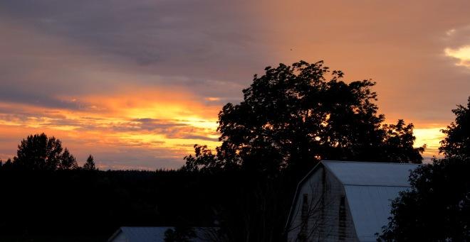 sunset712151