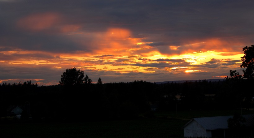 sunset712152