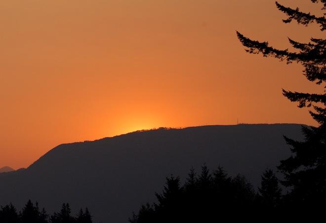 sunrise813154