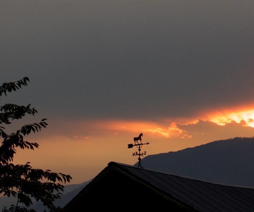 sunrise814151