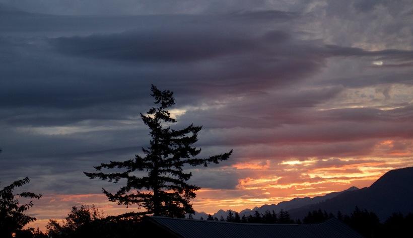 sunrise85154