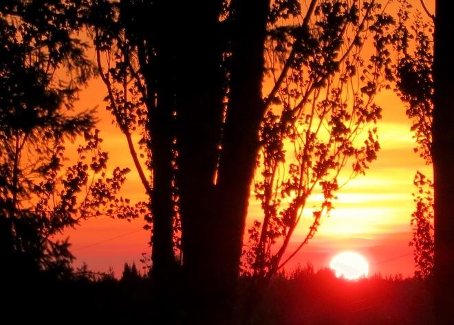 sunset8101512