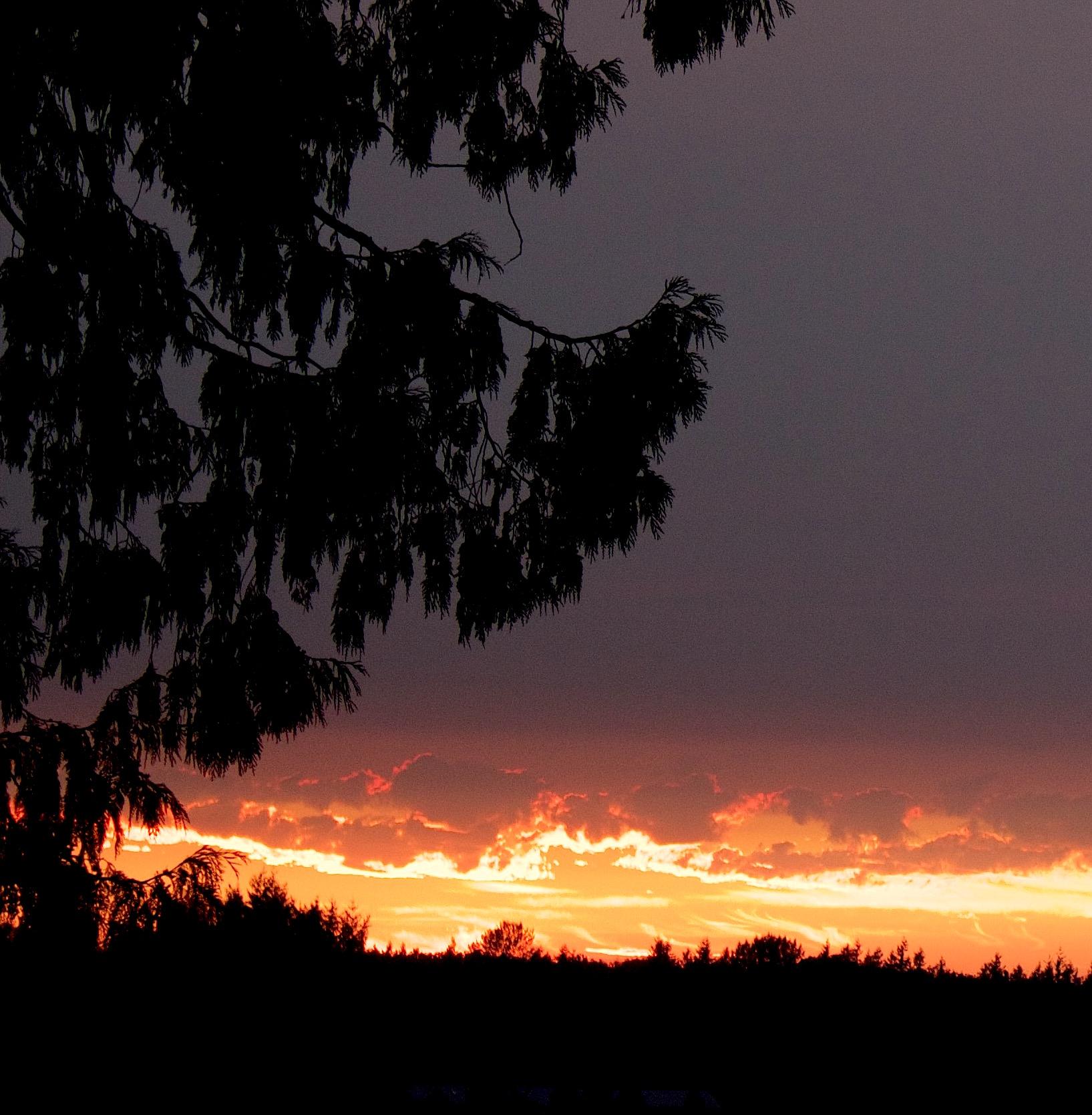 sunset82215