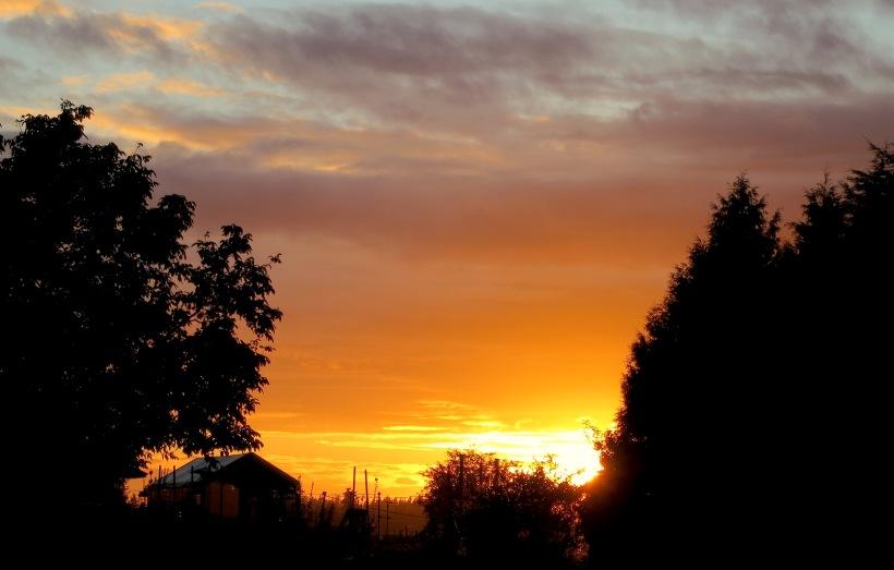 sunset8615
