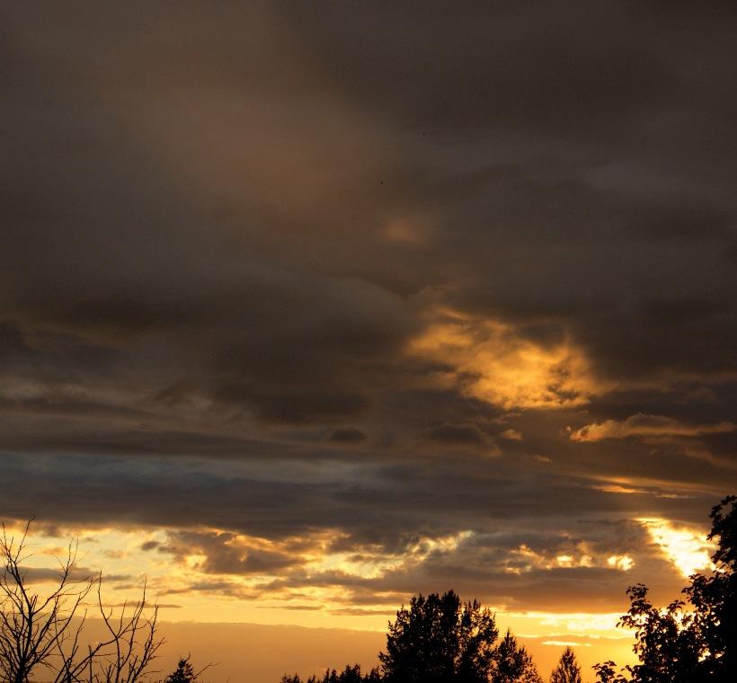 sunset88151