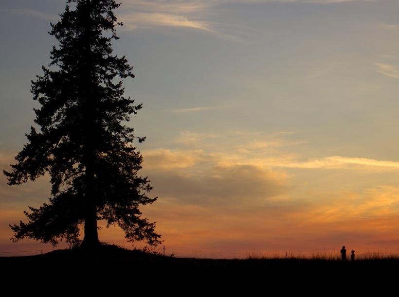sunsetnatetomomi
