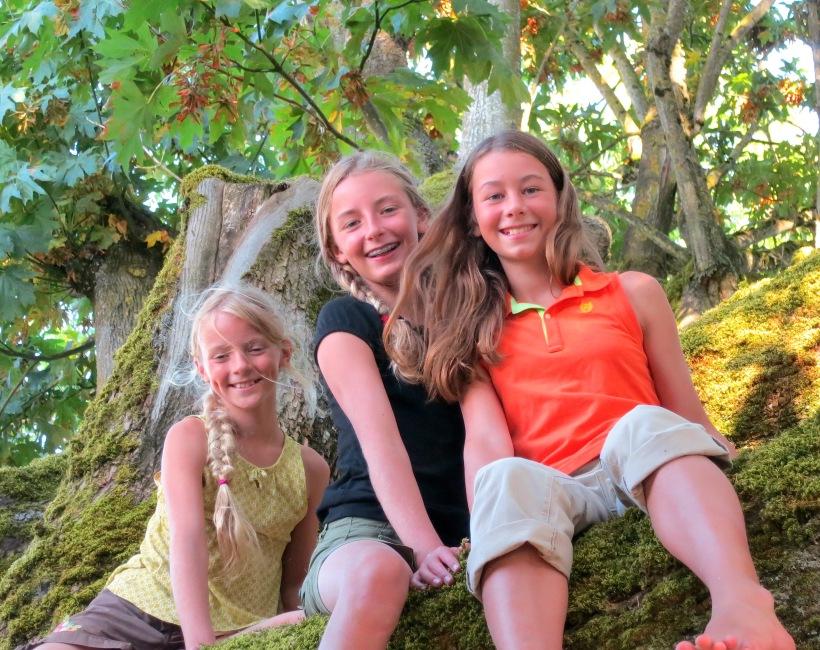 treeclimbers1