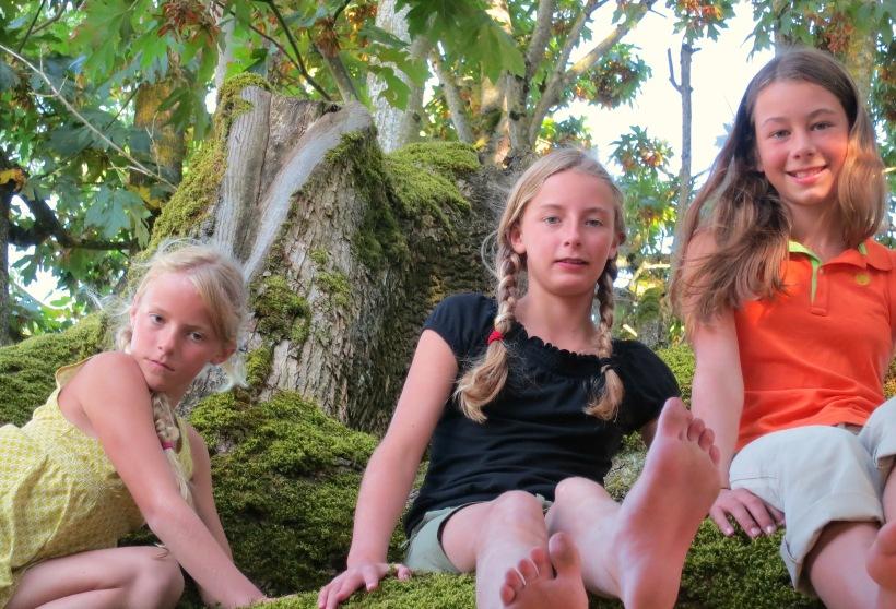 treeclimbers3