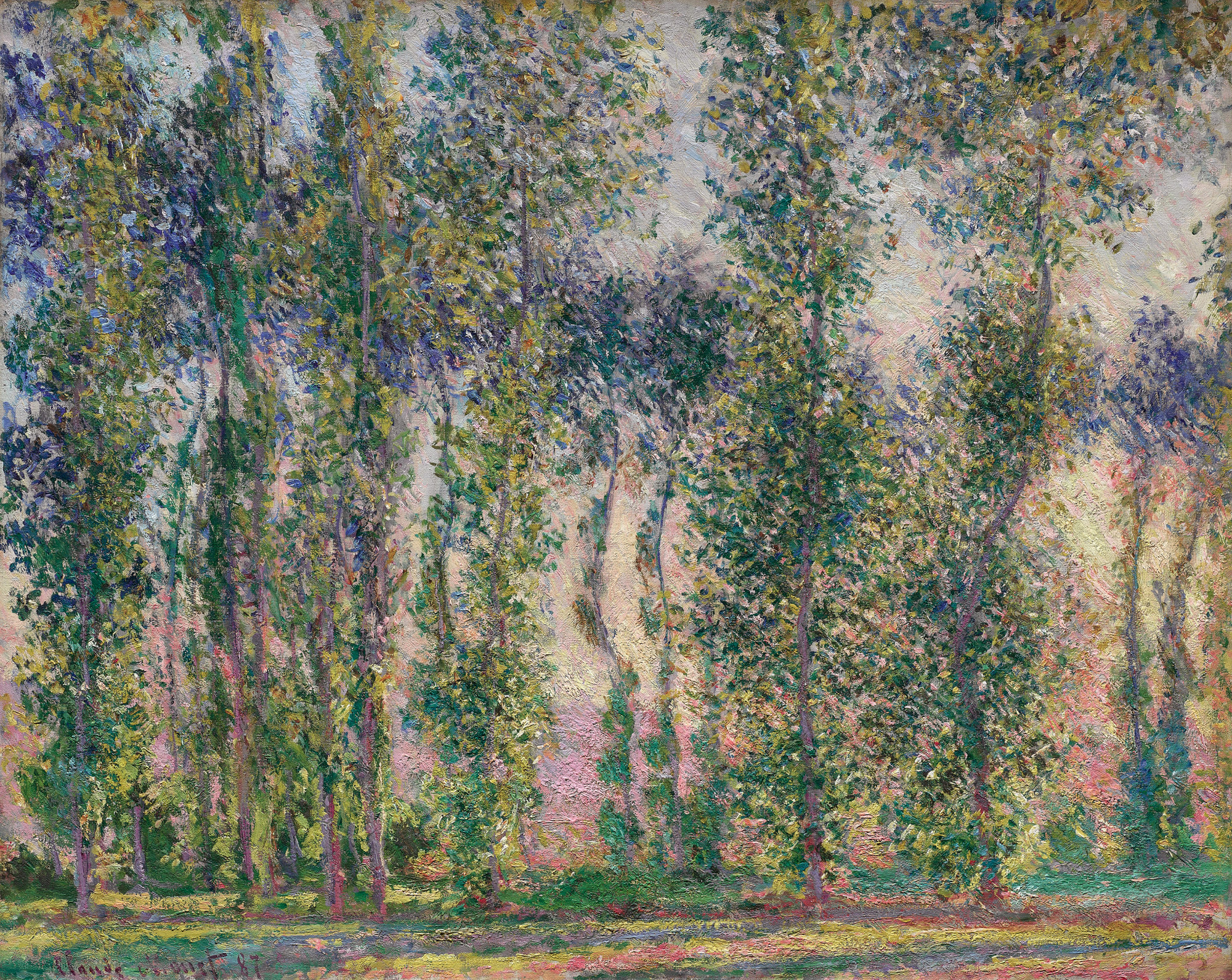 From spring to autumn 1891, Monet devoted himself to the treatment of a new subject, the only one he painted throughout this period: poplar trees. He produced a group of about 20 canvases depicting the trees planted on the edge of a marsh situated on the left bank of the Epte, two kilometres upstream from Giverny. The site had been put up for sale during the summer, and the plan was to cut down these trees. After the mayor had refused to grant a reprieve, Monet found himself forced to pay a sum of money to the timber merchant to stop the trees being felled before he had finished the series. Having set up in a boat, he made the most of the perspective effect offered by the line of poplars, which followed the winding course of the river upstream, forming a kind of large 'S'. He was then able to form decorative compositions that were built around curved lines and counterbalanced by the verticals of the trunks. Monet painted several sub-series, reproducing the trees face-on and reflected in the river, but sometimes he reduced the motif to the simple vertical line of the trunks. With this new series, the painter repeated the approach he had undertaken the previous year with the Meules. The titles echo those he had chosen for that first series. The aim was identical in both cases: to depict the variations in light and seasons. The 'instantaneity' of these paintings is meant to convey the impression one feels when encountering the subject at a precise moment. The poplars series was the first to be exhibited without any other painting, as a complete entity in itself, when it was shown in the Durand-Ruel gallery in 1892.