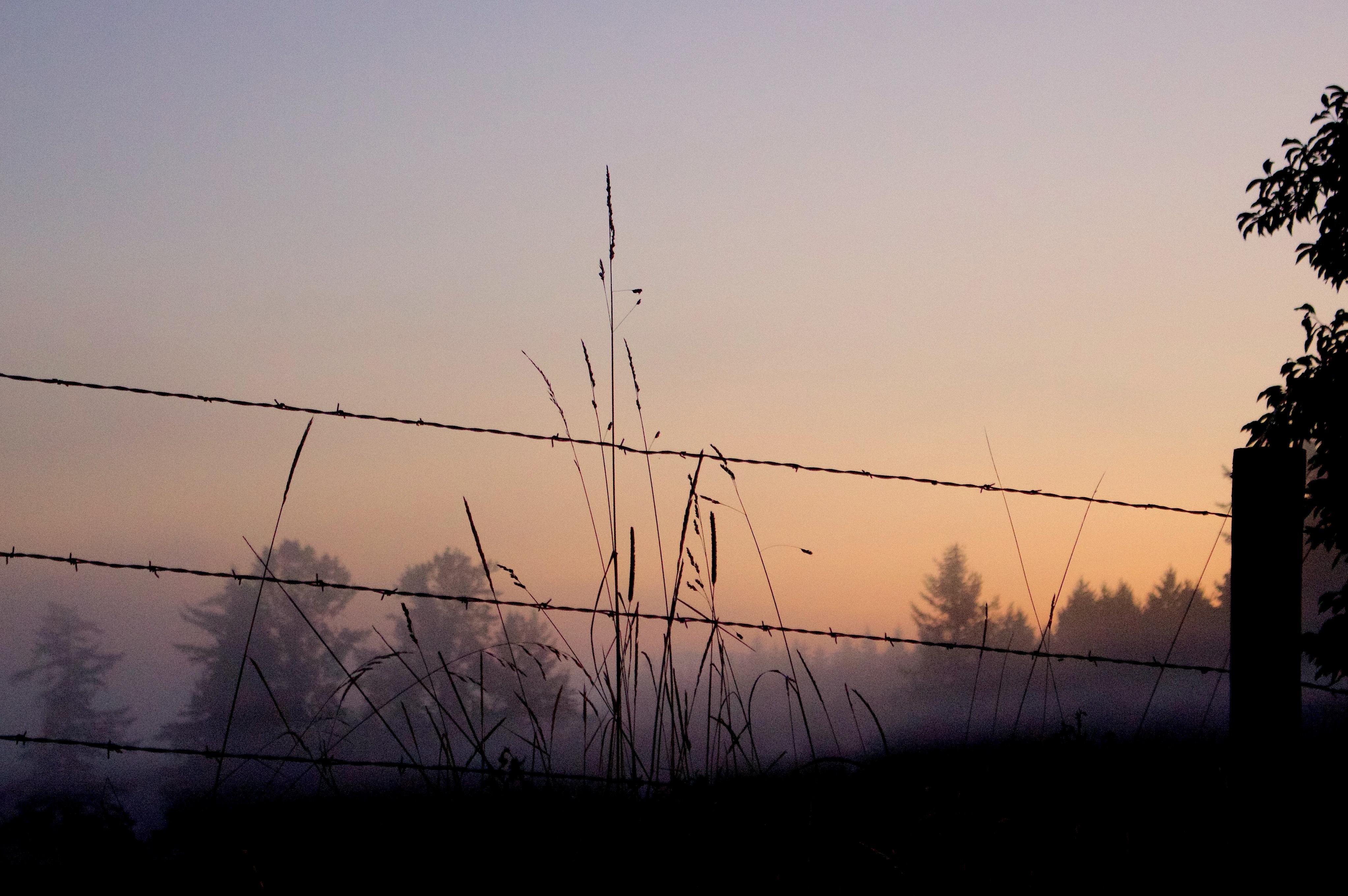 sunrise910151