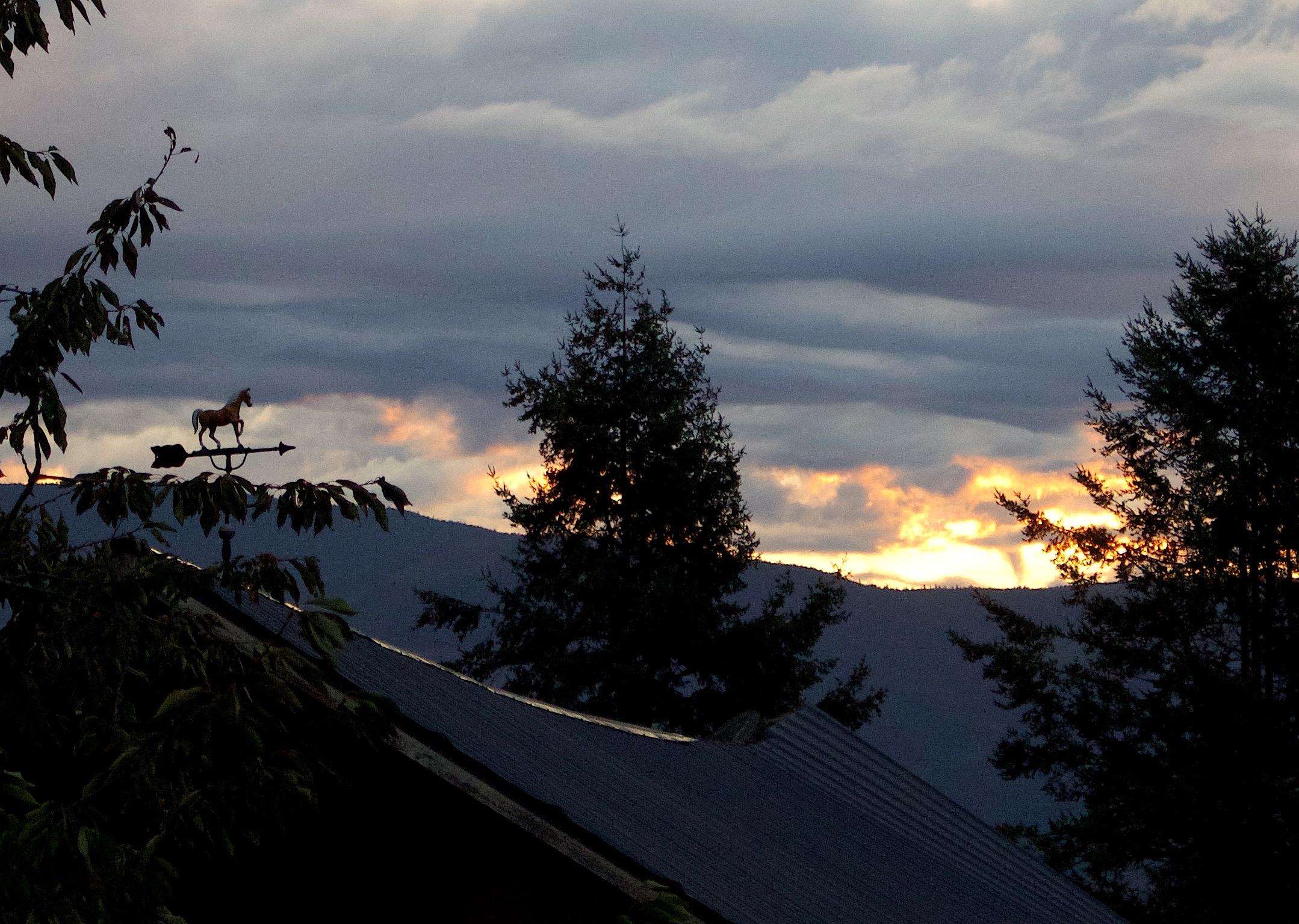 sunrise913151