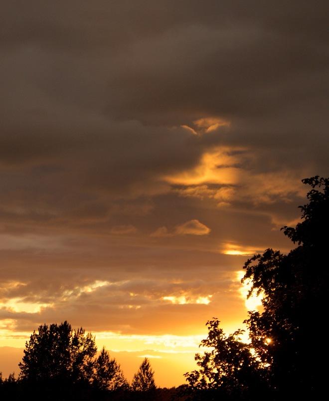 sunset88152