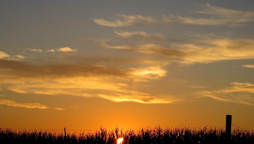 sunset91015