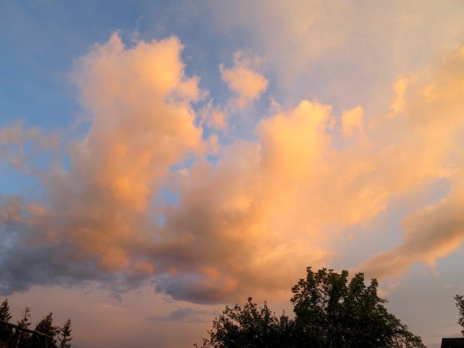 sunset95151