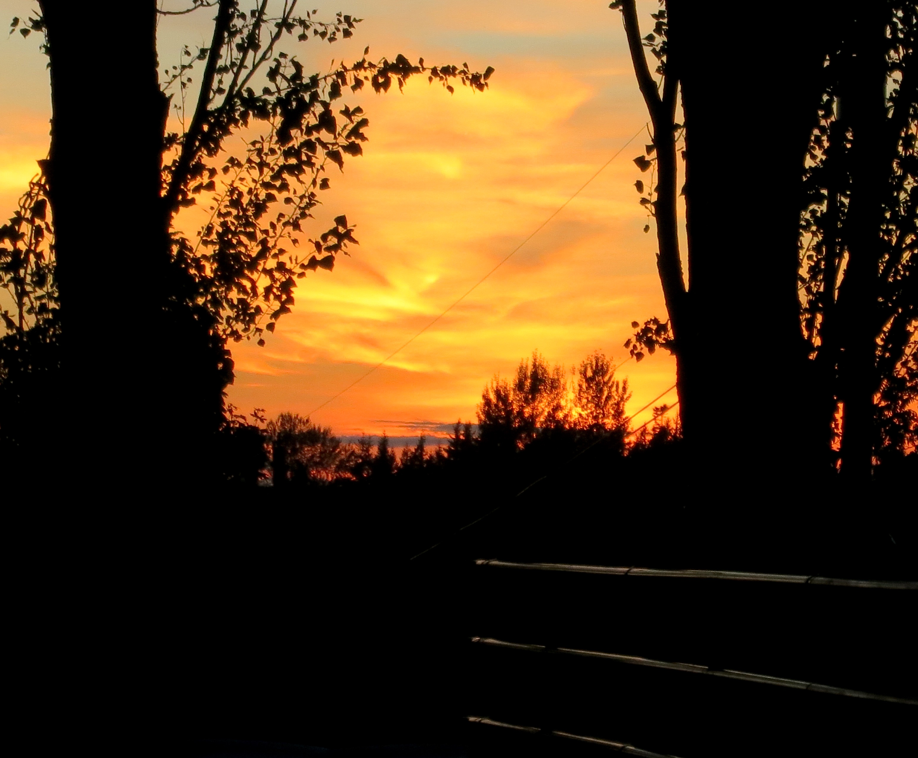 sunset9915