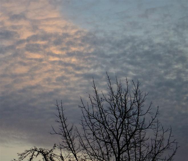dawn102415