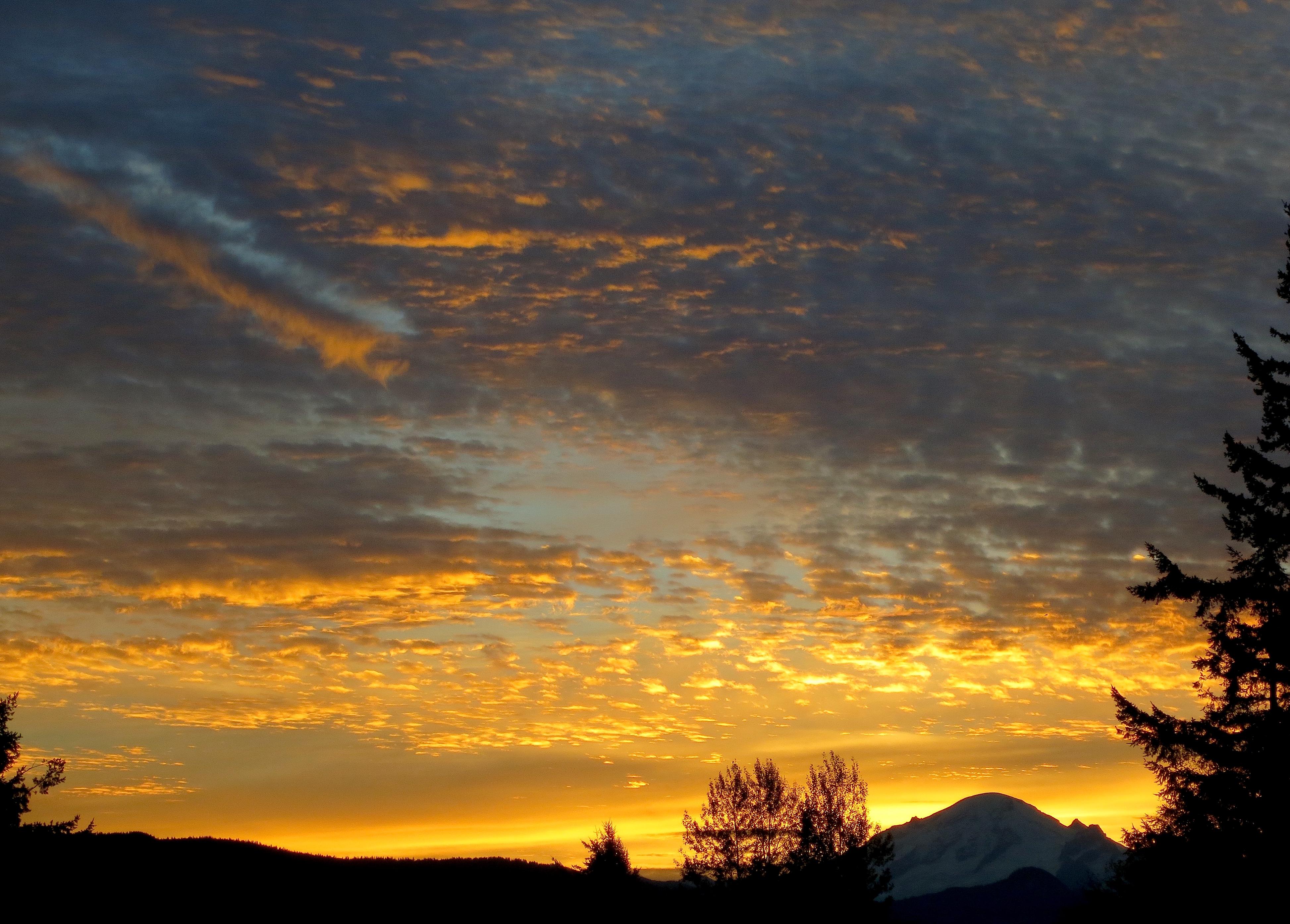 sunrise10154