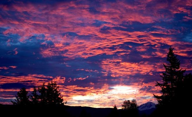 sunrise109159