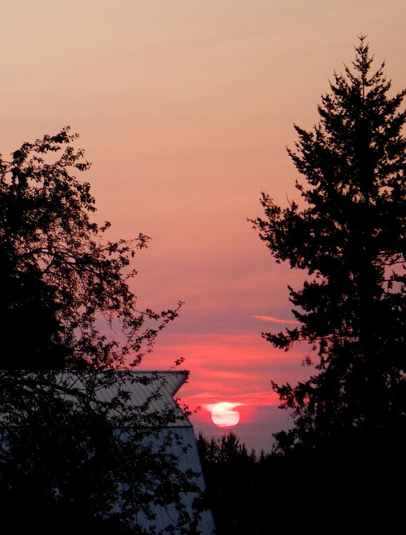 sunset81115