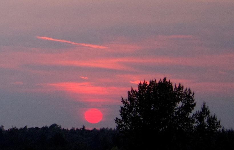 sunset811153