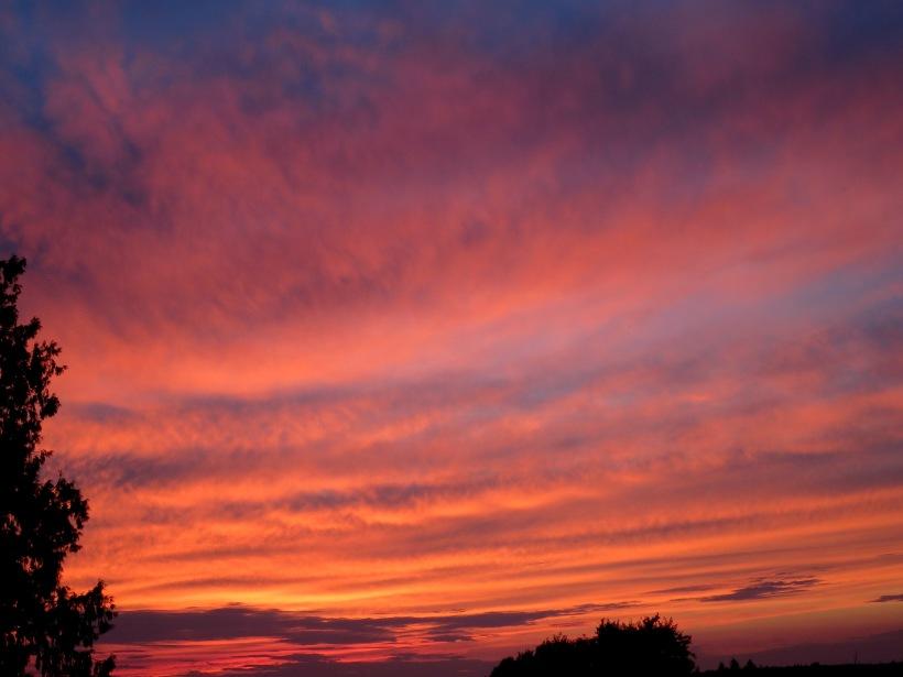 sunset827151