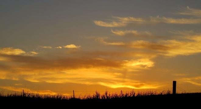 sunset910152