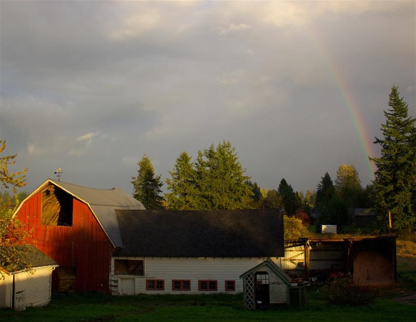 rainbowfarm