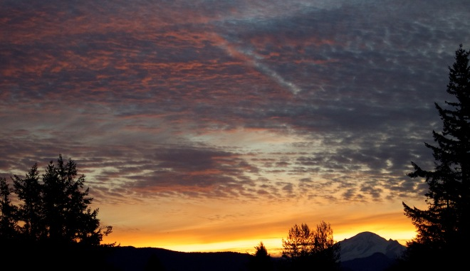 sunrise1016153