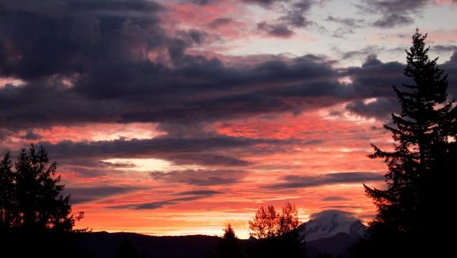 sunrise1021152