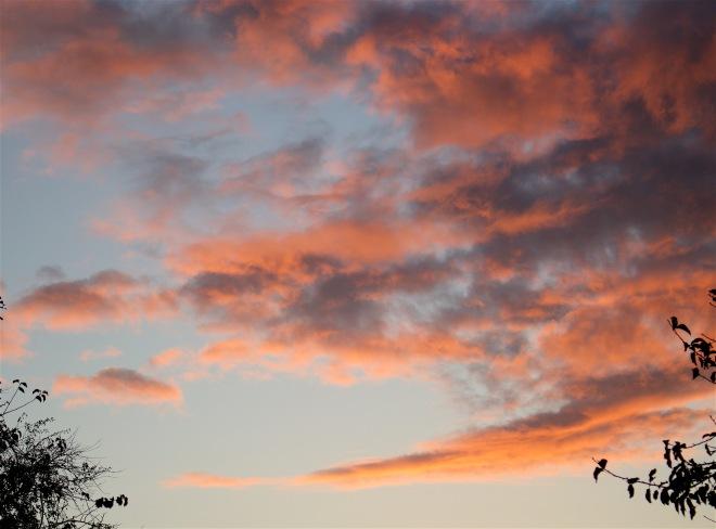 sunset1031151