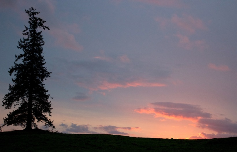 sunset1111152