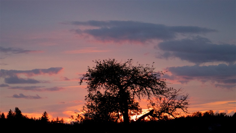 sunset1111153