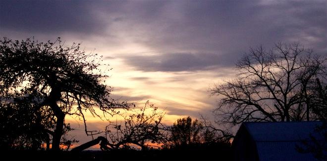 sunset1111155
