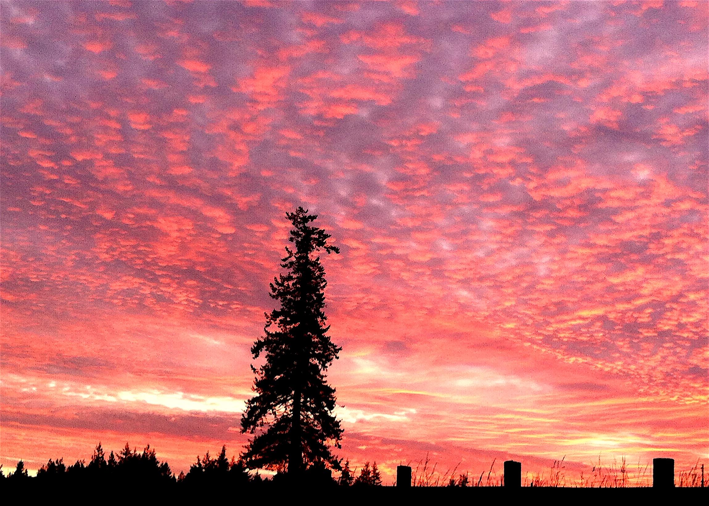sunset112315