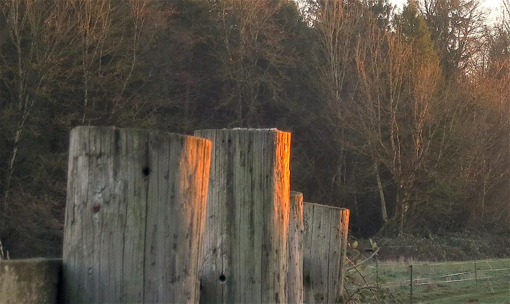 fencepostssunset