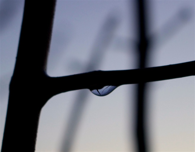 raindropreflect