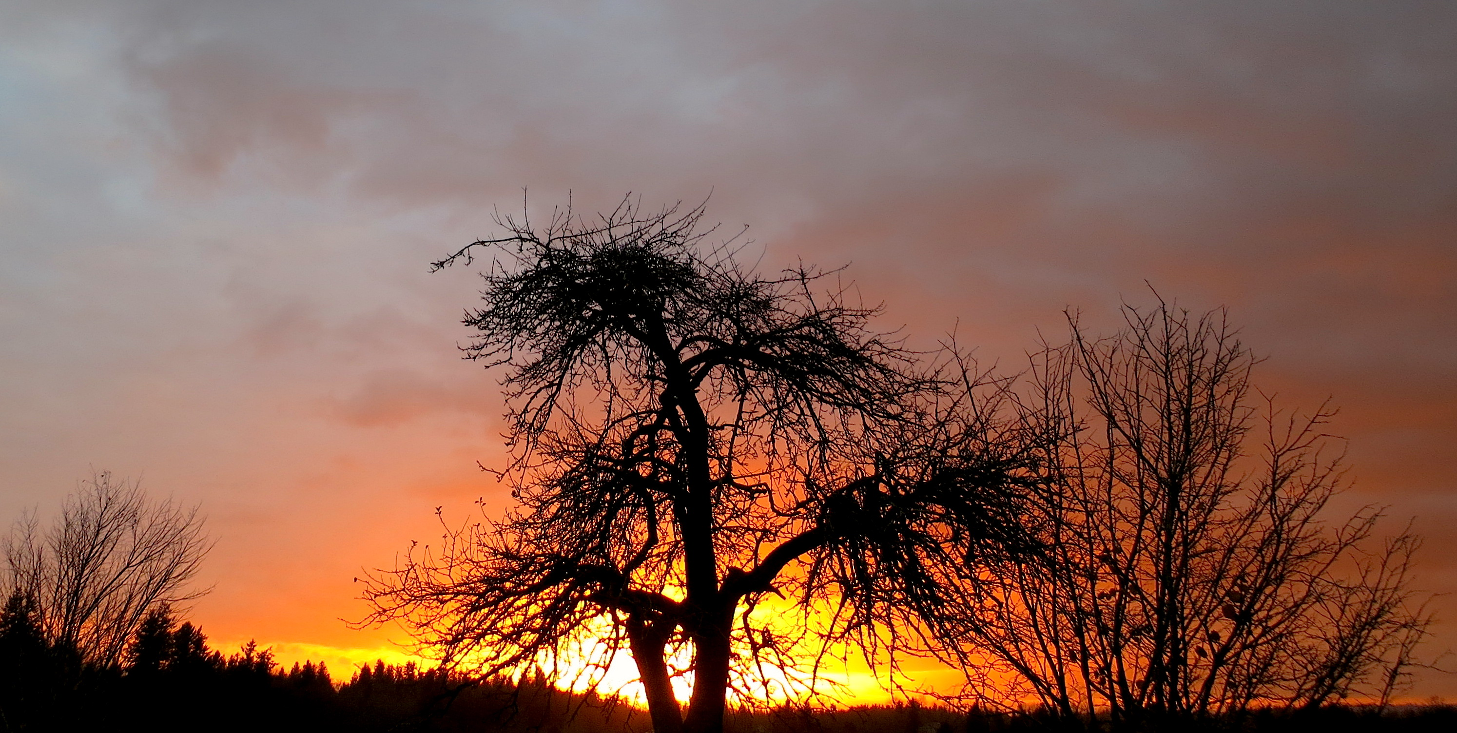 sunset11162