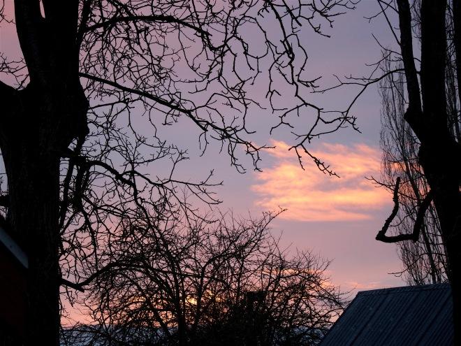 sunset15164