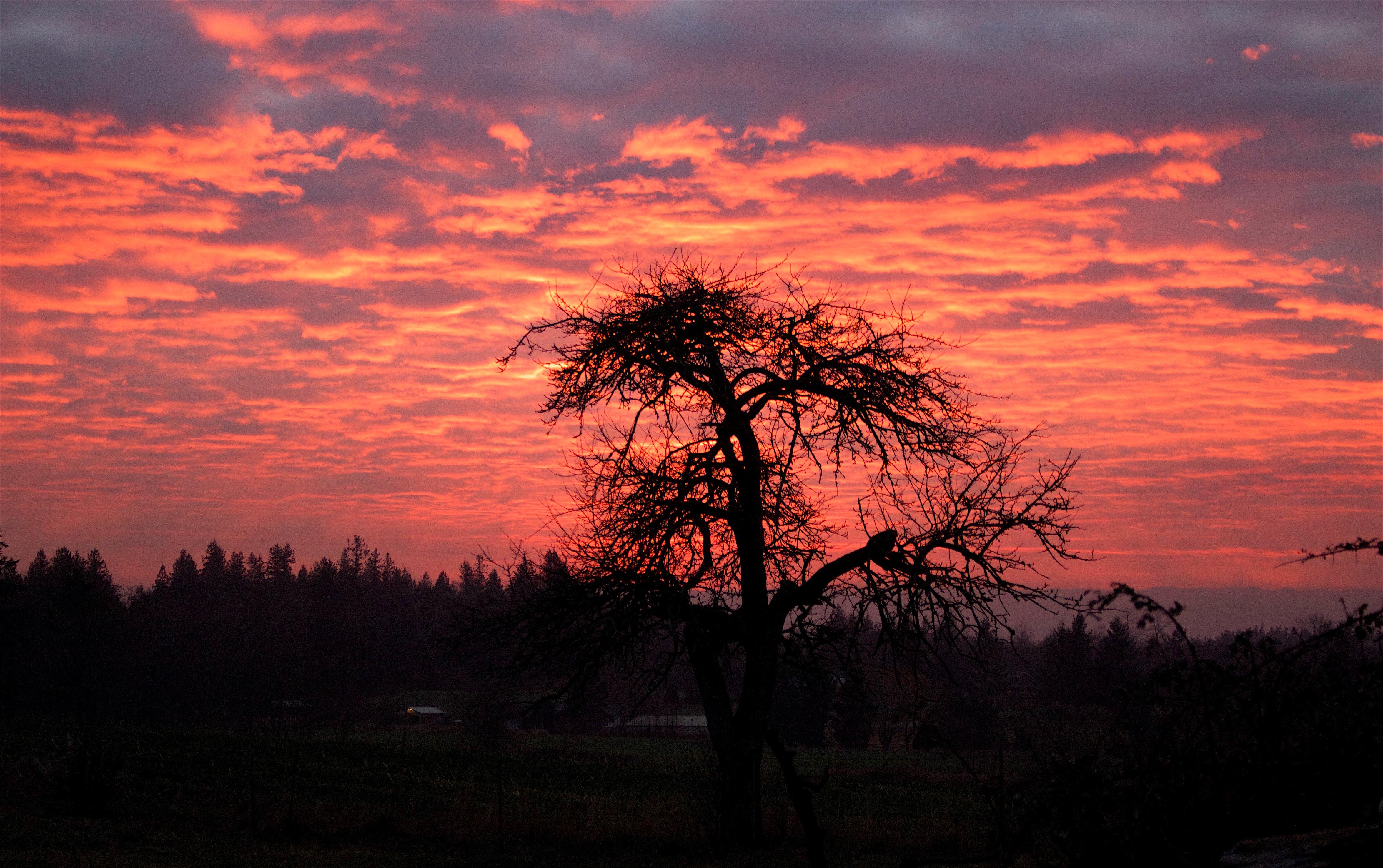 sunset17161