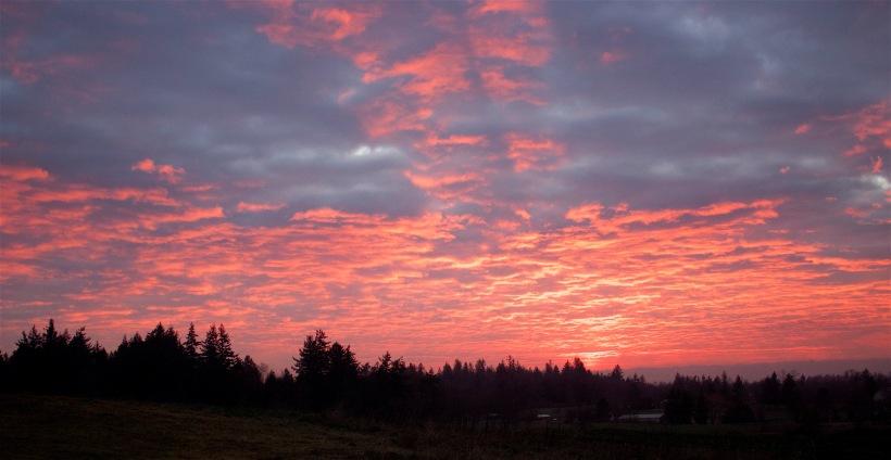 sunset17164