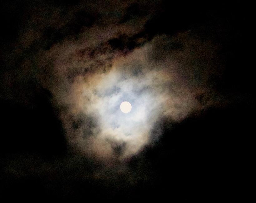 moon221163