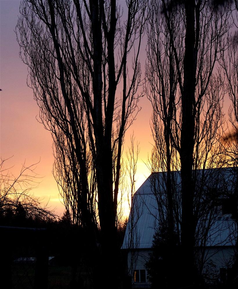 sunset130161