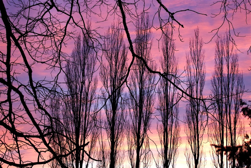 sunset329161