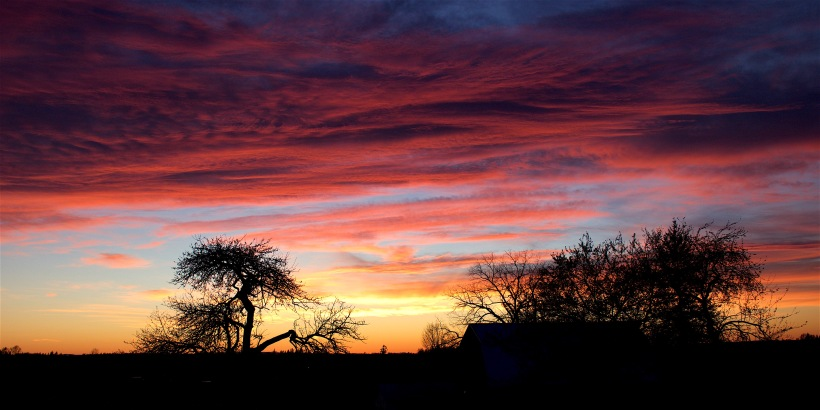 sunset329166