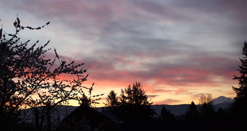 sunrise4316