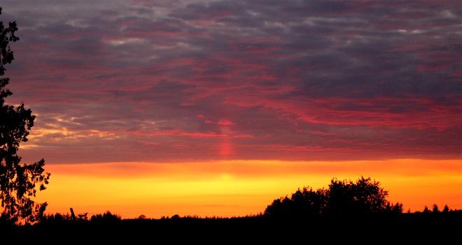 sunset427161